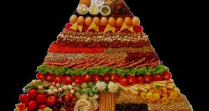 Explicación de cada grupo de alimentos