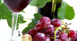 Comprar vinos online está de moda